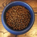 Pet Wants Charlotte Provides Gluten Free Formulas - Lamb and Brown Rice Dog Food